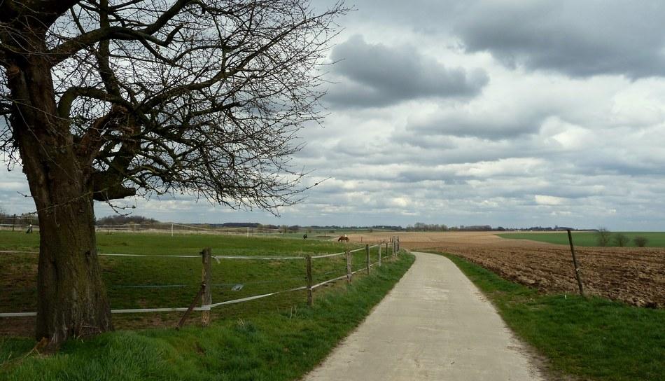 Longueville paysage.jpg