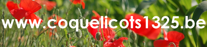 Coquelicots1325 banner